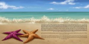 starfish-shore-ketubah