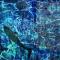 The Underwater Ketubah